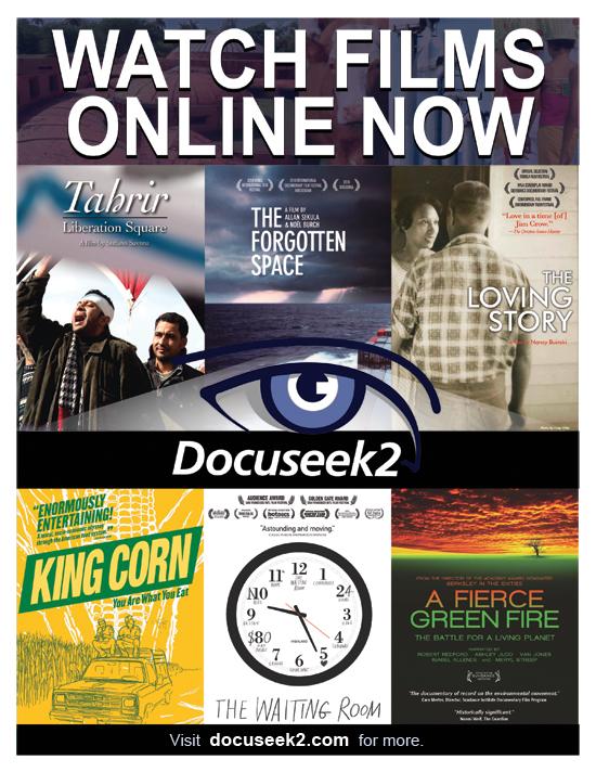Docuseek2 Promotional Flier