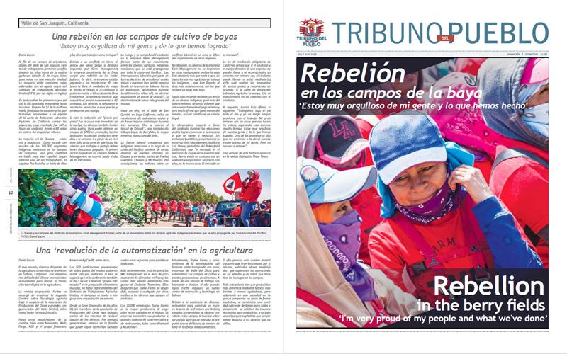 Tribuno Del Pueblo – July August 2016  - Front & Back Cover