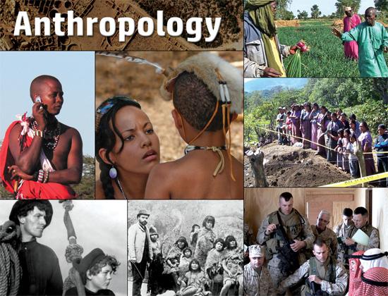 Docuseek 2 Postcard for Anthropology
