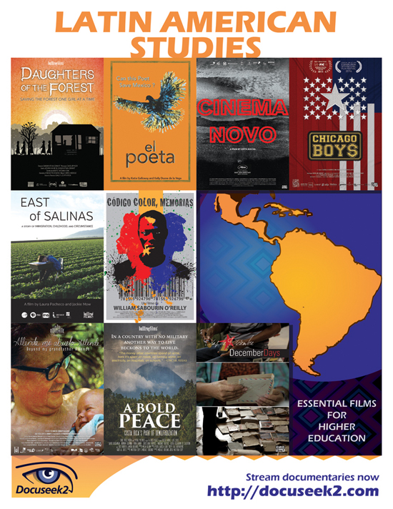 Docuseek2 Latin American Studies Flyer